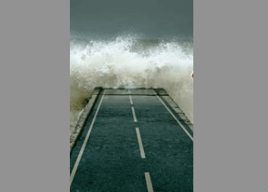 tsunami-terranova