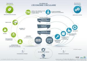 Schéma de l'économie circulaire par L'institut de l'économie circulaire