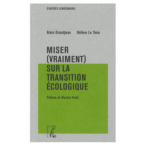miservraimentsurlatransition-couverture