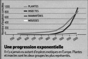 Une progression importante des espèces invasives