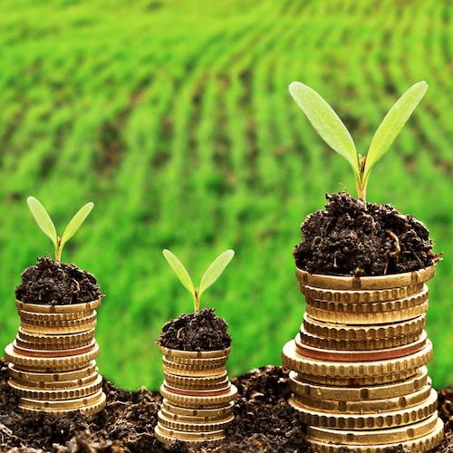Adopter une vision globale du financement de la transition écologique
