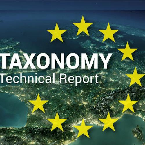 Couverture du rapport d'expert sur la taxonomie